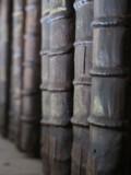 Bookspines150x150