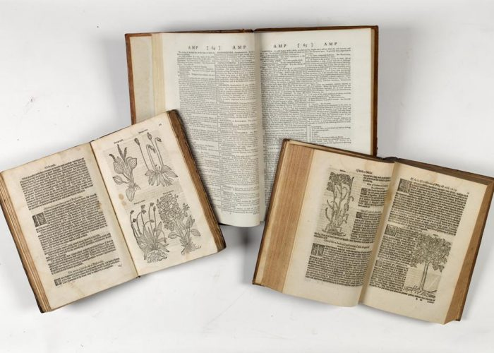 P00139291x: A New Medical Dictionary, Or, General Repository of Physic : Containing an Explanation of the Terms, and a Description of the Various Particulars Relating to Anatomy, Physiology, Physic, by G. Motherby, 1791, in Armagh Robinson Library